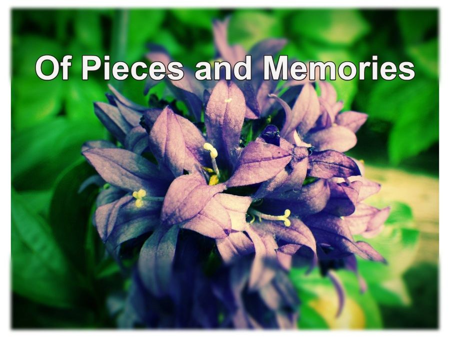 of pieces and memories cover photo
